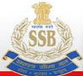 ssb constable driver result 2012
