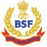 bsf result 2014